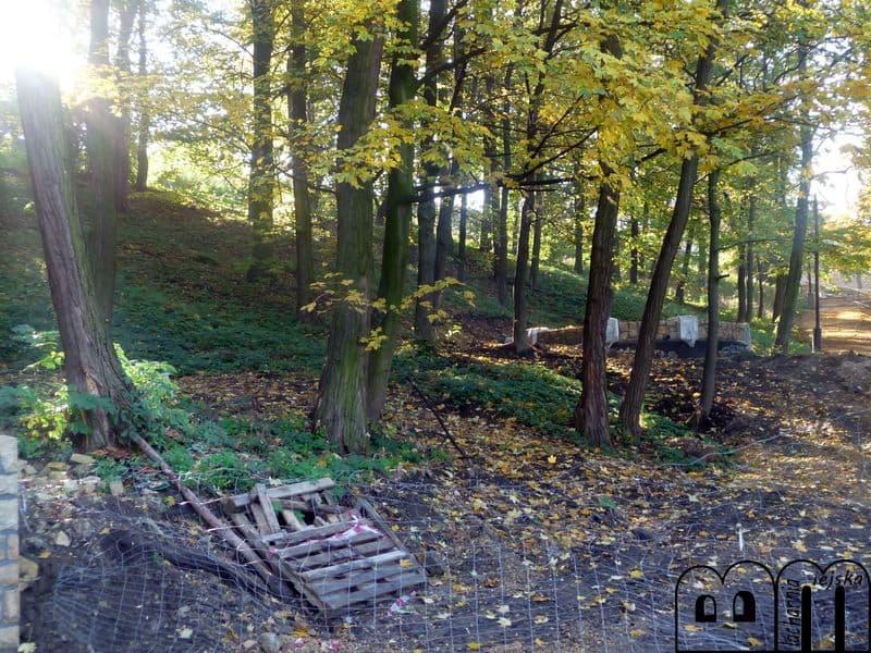 wzgórze zamkowe