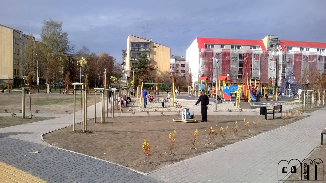 sar_zamkowe-5